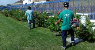 AFID Green