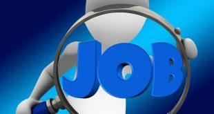 recrutar autoridade tributária emprego jovem CV contratação de desempregados ikea pme magazine