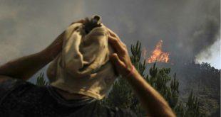 BCP e Santander Totta abrem contas de solidariedade para a Madeira agricultores