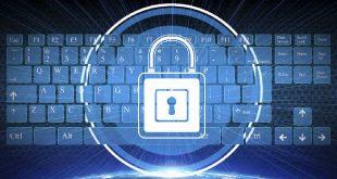 ciberseguraça