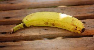 banana madeira pme magazine