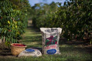 UCC Coffee reforça presença em Portugal