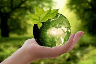 Turismo de Portugal e Territórios Criativos criam programa Green UP