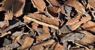 Corticeira Amorim volta a inovar em rolhas anti sabor