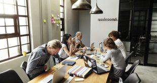 Nestlé Portugal criou mais de 1600 oportunidades de emprego jovem