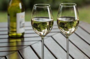 Rota dos Vinhos de Lisboa