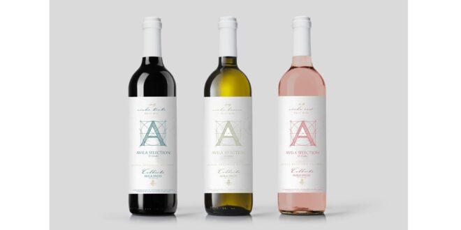 vinho avila spaces