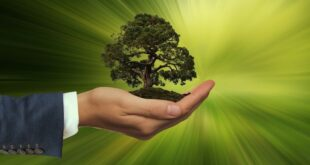 energias renováveis transformação industrial