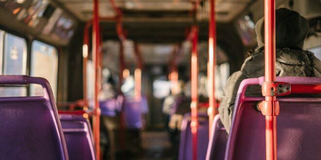 municipio de abrantes autocarro concurso startups
