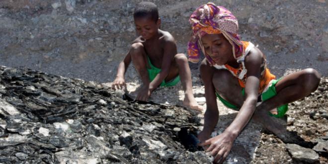 FAROL trabalho forçado escravatura crianças startups