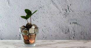 Portugal 2020 – S. I. Inovação Produtiva dinheiro moedas fundos comunitários Projetos de Investimento Produtivo